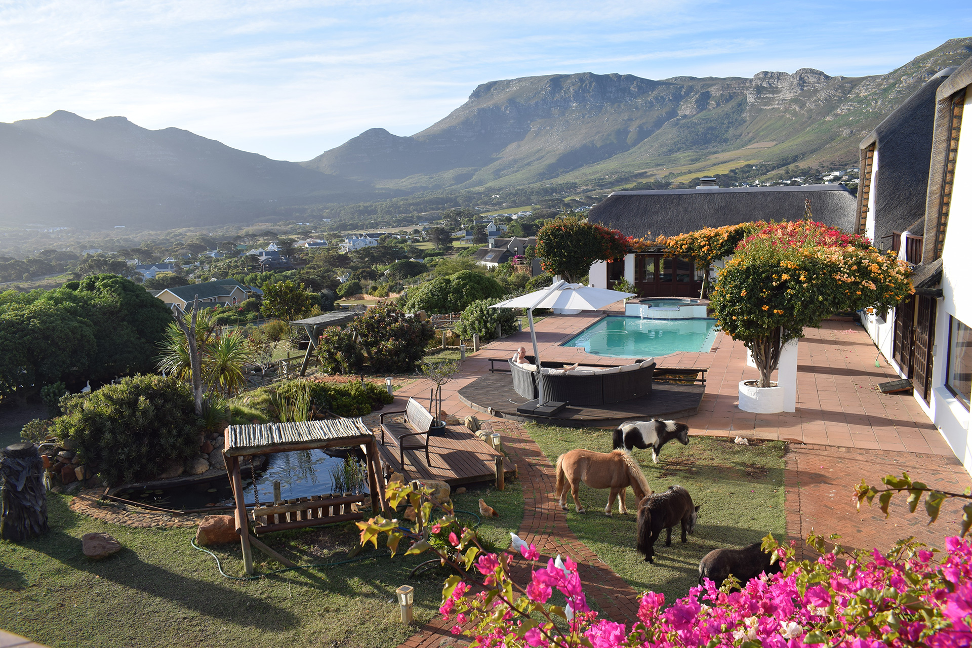 Enchanted Garden | Chalet and Cottage Accommodation | Noordhoek